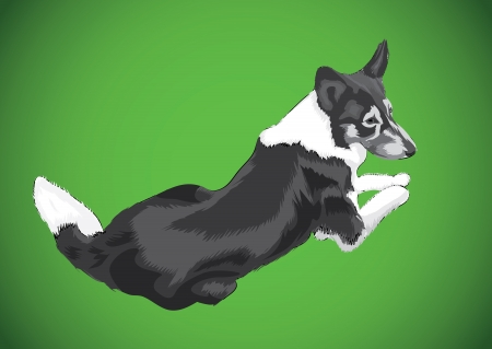 lying big dog, isolated illustration Vector