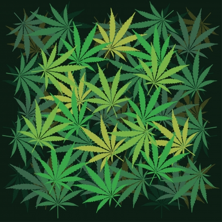 Plenty of cannabis leafs - illustration Vector