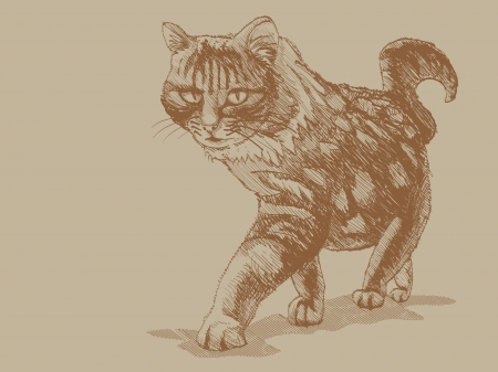 approaching: Approaching cat, perspective - illustration