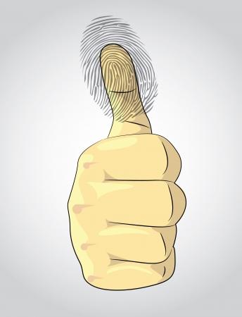 thumb print: Thumb up and fingerprint - illustration Illustration
