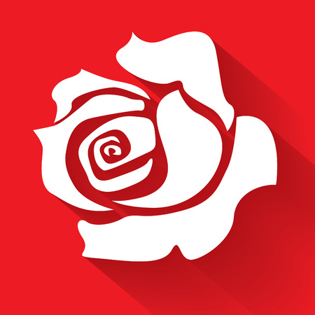 White rose on a red background, illustration