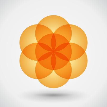 flower shape: flower - blossom, geometric shape logotype. Illustartion