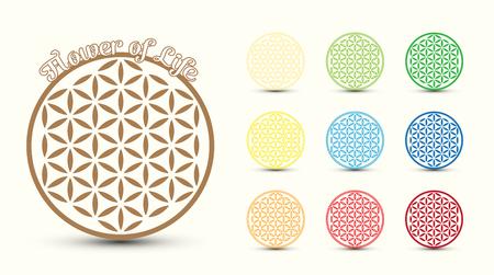 flower structure: Flower of Life symbol, set of. Colorful variations Illustration