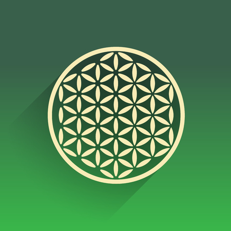kundalini: Flower of life flat design