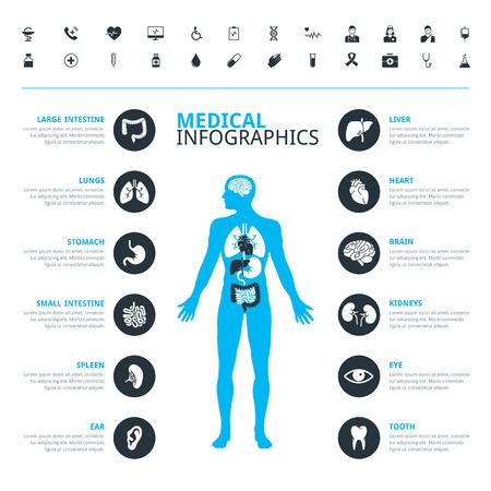 anatomía: órganos humanos y médicos conjunto de iconos médica con el cuerpo humano en azul