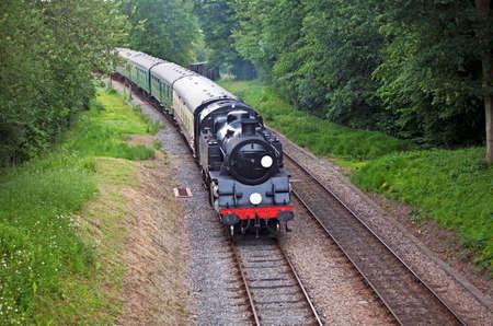 Branch line steam train on a gentle passenger trip through woodland