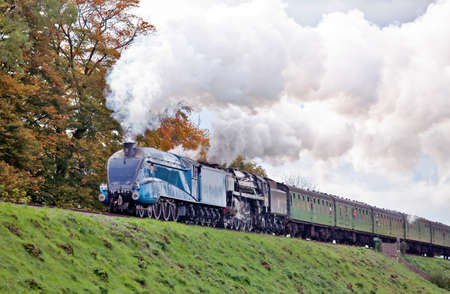 dominion: MEDSTEAD, ENGLAND - OCTOBER 29: Steam locos 4492, Dominion of New Zealand & 70000, Brittania, head a fully loaded passenger service at the Mid Hants autumn steam gala on October 29, 2011 at Medstead.