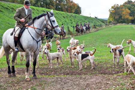 ROPLEY, ENGLAND - OCTOBER 29: Members of the Hampshire Hunt cross the fields below Wanderers curve on October 29, 2011 at Ropley. Hunting specific wild animals with dog packs in the UK is illegal.