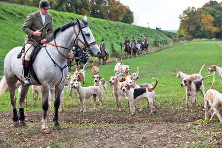 """hampshire: Ropley, Inglaterra - 29 de octubre: Los miembros de la caza Hampshire cruzar los campos a continuaci�n la curva de Wanderers el 29 de octubre de 2011 a las Ropley. """"Espec�fico"""" de caza silvestres, los animales con jaur�as de perros en el Reino Unido es ilegal."""