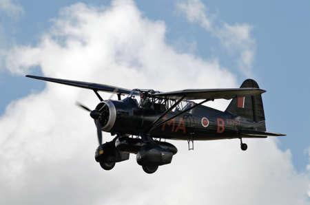 BIGGLESWADE, UK - JULY 28  An ex WW2  RAF Lysander spy plane approaches the Old Warden aerodrome on July 28, 2013 in Biggleswade  1,786 of these aircraft were built between 1938   1946