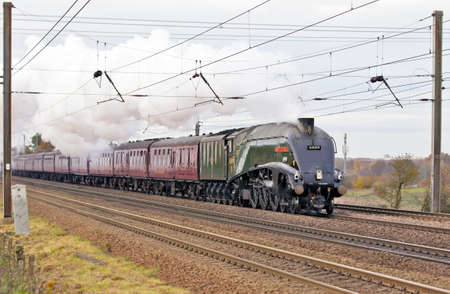mainline: WYMONDLEY, UK - NOVEMBER 23  Pacific A4 class steam locomotive Union of South Africa passes through Hertfordshire at speed with a mainline excursion toward London on November 23, 2013 in Wymondley  Editorial