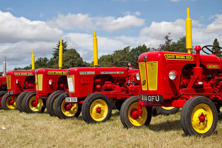 david brown: POTTEN END, UK - JULY 27: A line up of vintage David Brown tractors form part of the agricultural display at the Dacorum Steam Fair on July 27, 2014 in Potten End Editorial