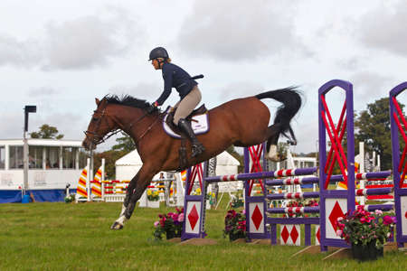 unnamed: WEEDON, UK - AUGUST 28:An unnamed female rider competing in one of the show jumping competitions at the BCC successfully clears the gate at the Bucks County show on August 28, 2014 in Weedon Editorial