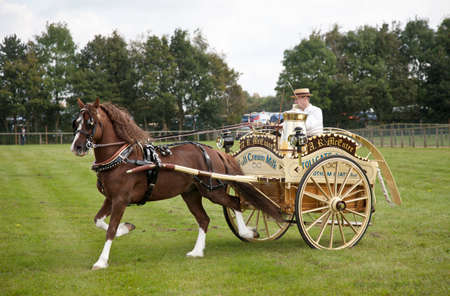 unnamed: NEWBURY, UK - SEPTEMBER 21: An unnamed competitor in the horse and gig competition displays his novel Ice Cream parlour rig to the judges and public at the Berks show on September 21, 2014 in Newbury.