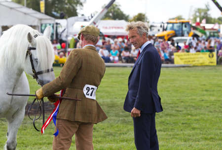 judging: WEEDON, UK - AUGUST 29: Former National Hunt Champion jockey John Francome MBE inspects a young horse while on judging duties at the Bucks County Show on August 29, 2013 in Weedon