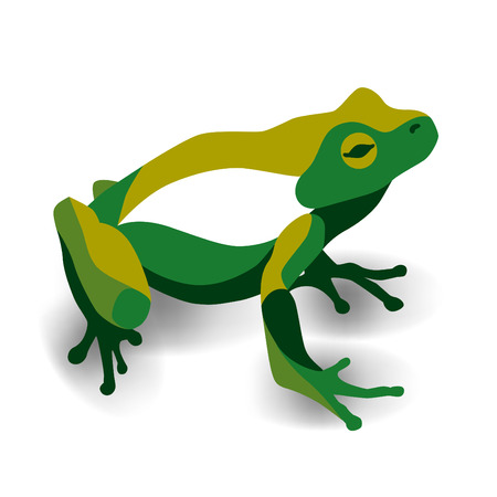 Trendy stylized illustration, frog, anuran, line vector silhouette of frog, vector illustration Çizim