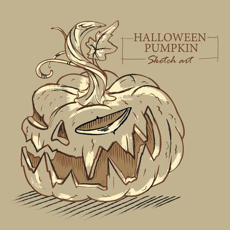 Halloween cartoon evil pumpkin sketch illustration on brown background. Vector illustration. Illustration