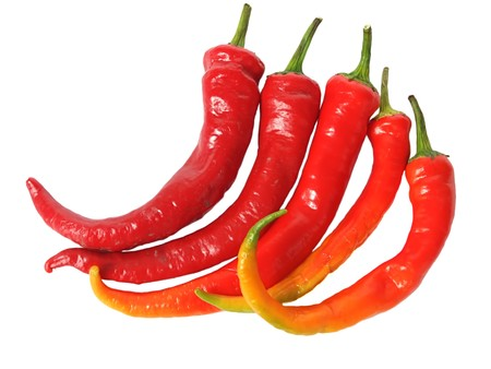 chilly: Red chilly pepper over white
