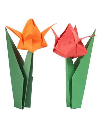Origami tulip over white
