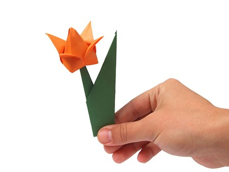 Origami tulip on hand over white  photo