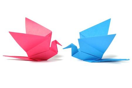 uccello origami: Origami uccello over white