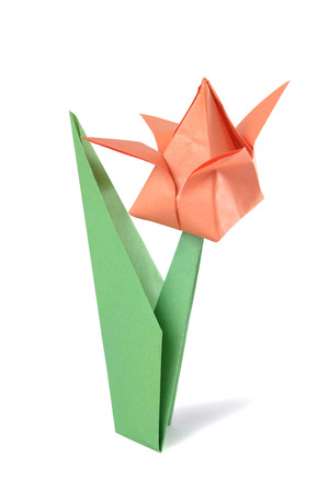 Origami tulip isolated over white backgrîund photo