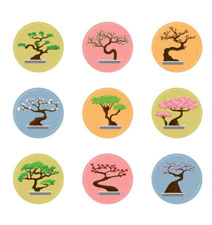 bonsai: Bonsai Trees