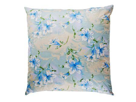 Comfortable home indoor interior pillow furniture Stock Photo - 5773637