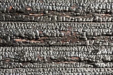 Fire heat burnt black coal ruined wood log house Stock Photo - 7817397