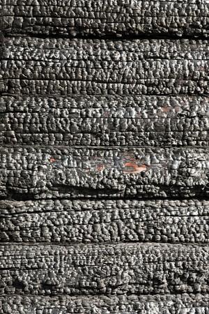 Fire heat burnt black coal ruined wood log house Stock Photo - 7919017