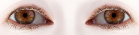 Human body part - beauty looking women eyes macro Stock Photo - 8015619