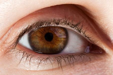 Human body part - beauty looking women eye macro Stock Photo - 8344321