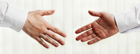 business partner: Business people hand greeting or meeting handshake