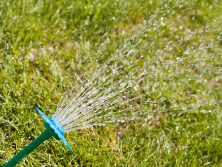 Sprinkler water spray drop on wet green grass lawn Stock Photo - 9944692