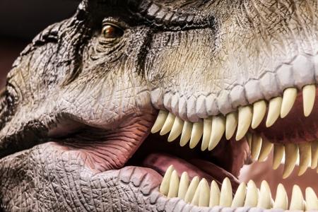 dinosaur teeth: Tyrannosaurus - prehistoric era dinosaur showing his toothy mouth