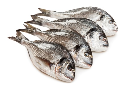 Healthy eating seafood - raw gilt-head fish food heap white isolated photo