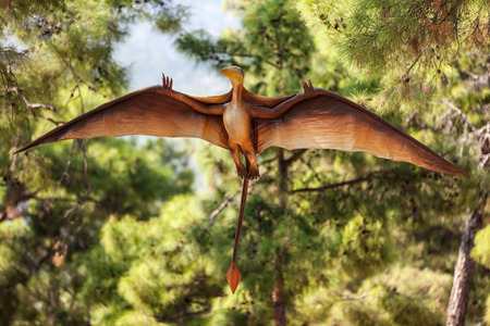 pterodactyl: Pterodactyl - prehistoric era wing dinosaur flying at forest Stock Photo