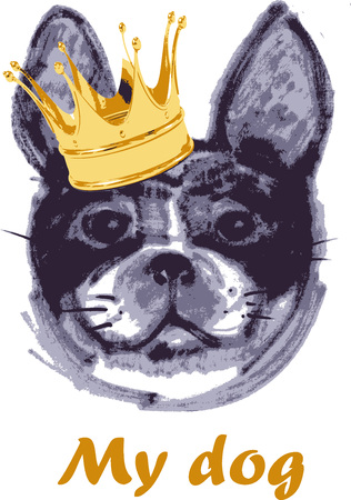 color drawing of the French Bulldog in the crown 矢量图像