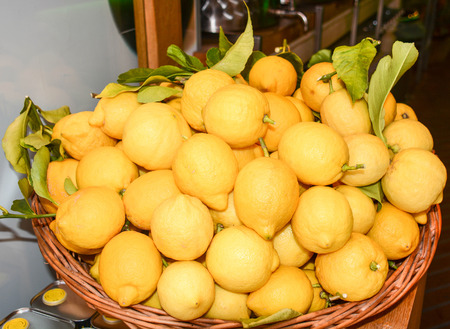 freshly picked: original italian lemons freshly picked for sale