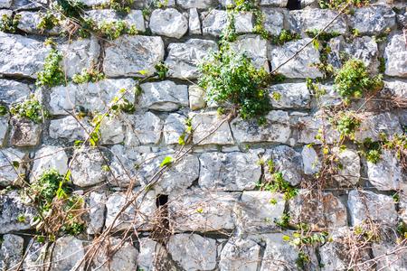 everyone: stone wall as a team everyone trust in everyone Stock Photo