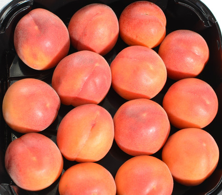 picked: freshly picked red apricots from the Italian countryside