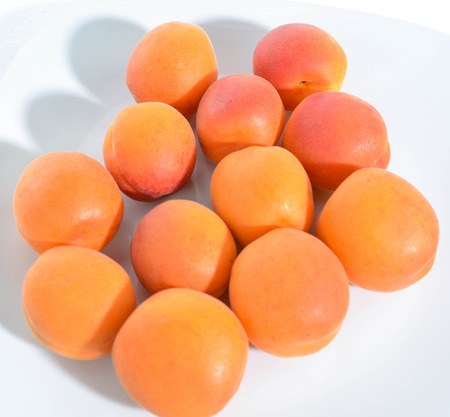 picked: freshly picked orange apricots from the Italian countryside Stock Photo