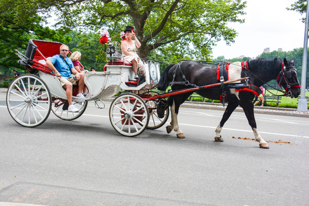 in central park NYC there are many tourist carriages embellished with flowers and colorful drapes that take tourists around the park to make admire all the most remote and beautiful corners, used for those who do not like walking or can not Foto de archivo - 120164826