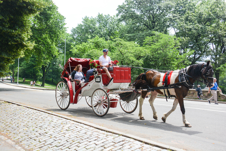 in central park NYC there are many tourist carriages embellished with flowers and colorful drapes that take tourists around the park to make admire all the most remote and beautiful corners, used for those who do not like walking or can not Foto de archivo - 120164828