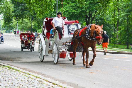 in central park NYC there are many tourist carriages embellished with flowers and colorful drapes that take tourists around the park to make admire all the most remote and beautiful corners, used for those who do not like walking or can not Foto de archivo - 120164829