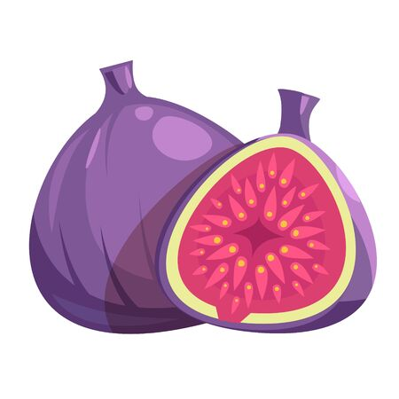 Whole and half fig. Isolated on white background. Vector flat color icon.