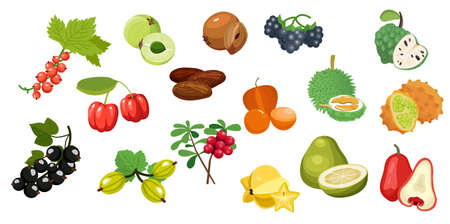 Set tropical fruits. Vector flat color icon isolated on white Vettoriali