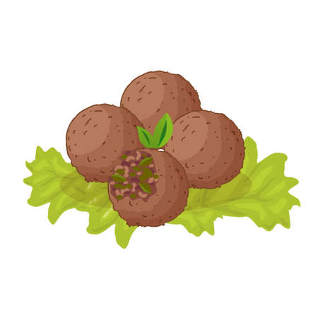 Falafel - jewish traditional food. Vector flat color icon isolated on white.