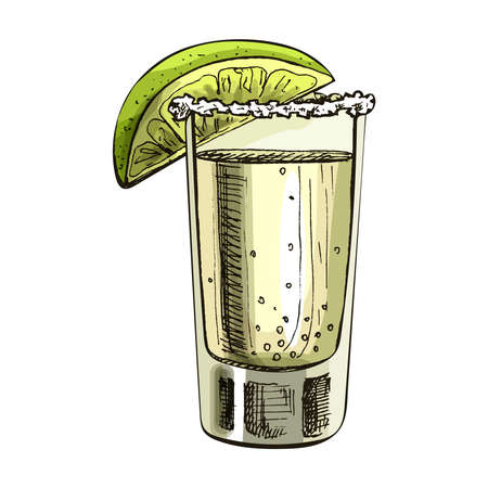 Glass tequila with slice lime. Vector vintage hatching Çizim