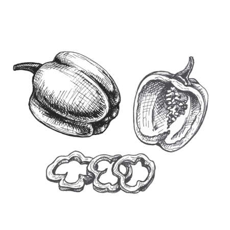 Whole half and slice sweet red bell peppers. Vector vintage hatching gray illustration.